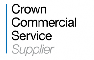 HC, Crown Commercial, Technology Services Framework